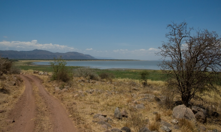 Lake_Manyara_north